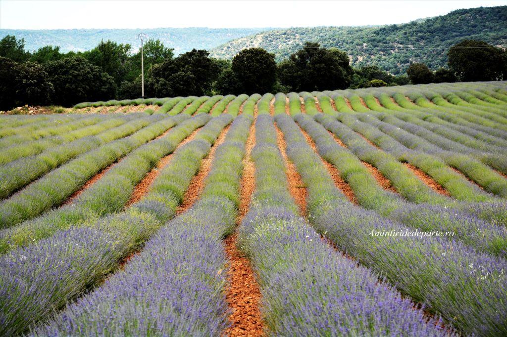 Brihuega, Provence-ul spaniol