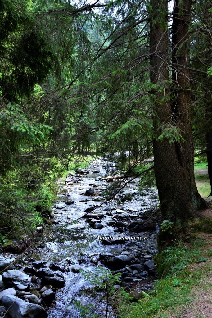 Parcul Natural Bucegi